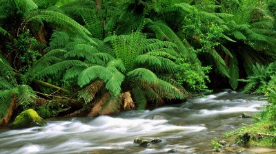 Sungai Mutiara